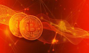 seinen Kurs bei Bitcoin Evolution
